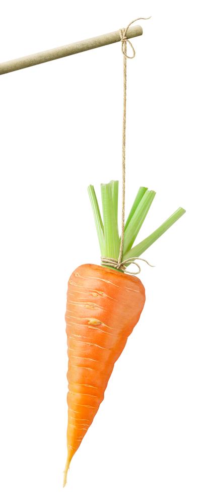 морковь на удочке