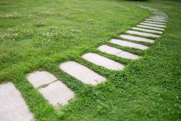 pathway-to-discovery---research